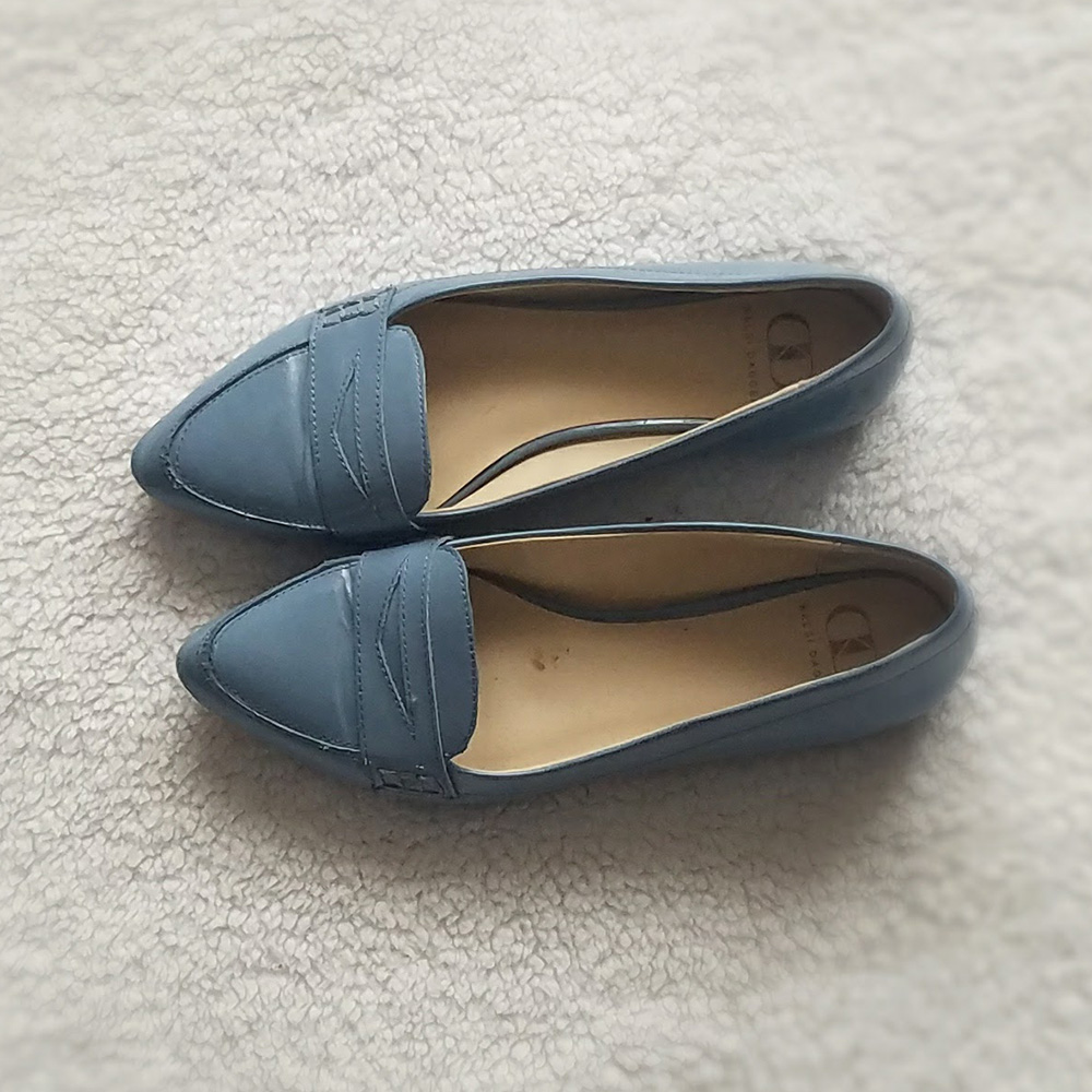 pointed toe loafer, loafer, blue loafer